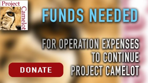 funds-needed
