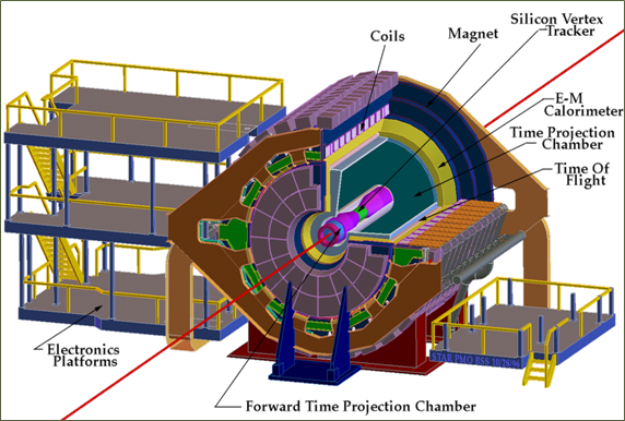 Forward_Time_Projection_Chamber_at_BNL_USA.png