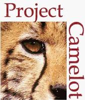 camelotlogomed