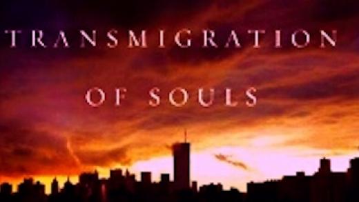 transmigrationofsouls